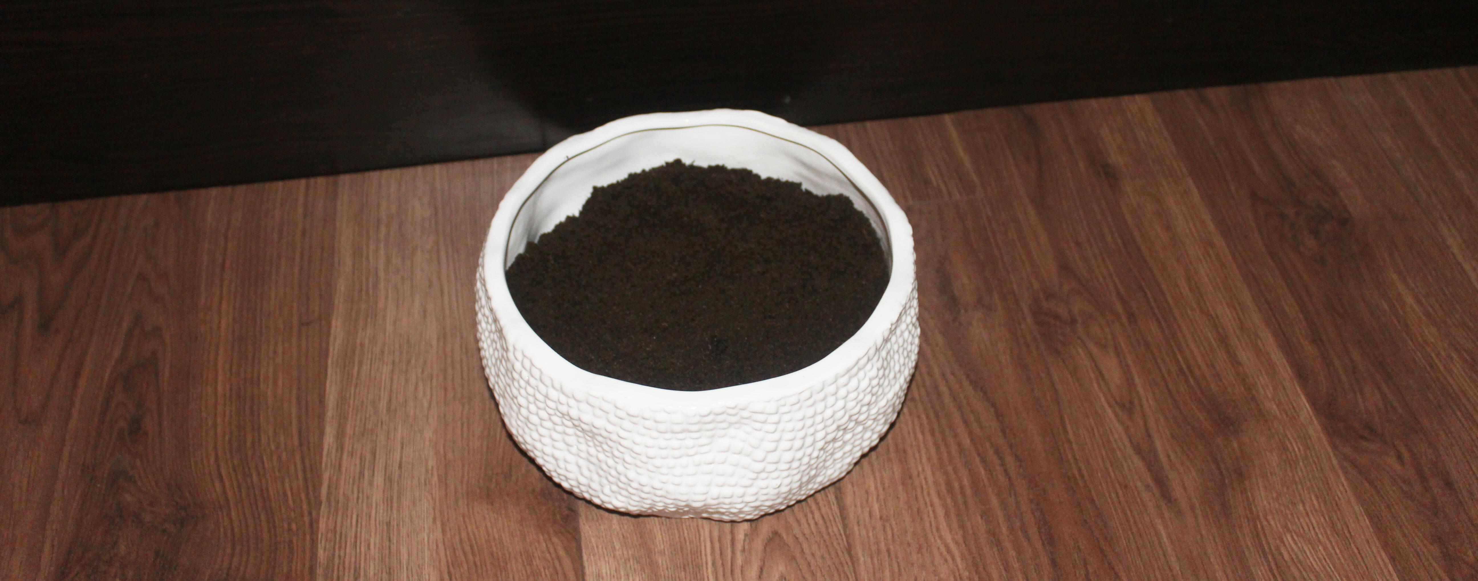 succulents-soil